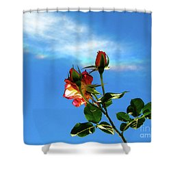 Rainbow Cloud And Sunlit Roses Shower Curtain by CML Brown