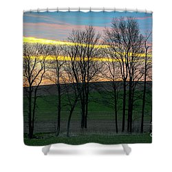 Rainbow Color Tree Horizon Shower Curtain
