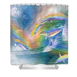 Rainbow Dolphins Shower Curtain