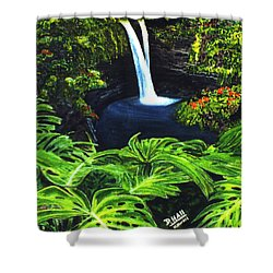 Rainbow Falls #83 Shower Curtain by Donald k Hall