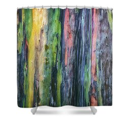 Shower Curtain featuring the photograph Rainbow Forest by Ryan Manuel