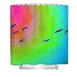Rainbow Gulls Shower Curtain by Tim Allen