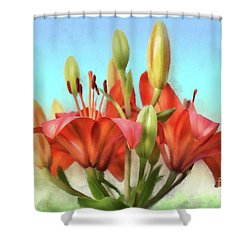 Shower Curtain featuring the photograph Rainbow Lilies by Lois Bryan