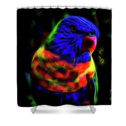 Rainbow Lorikeet - Fractal Shower Curtain