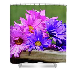 Rainbow Mums 2 Of 5 Shower Curtain