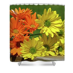 Rainbow Mums 4 Of 5 Shower Curtain