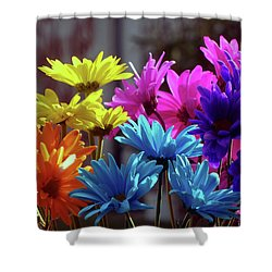 Rainbow Mums 5 Of 5 Shower Curtain