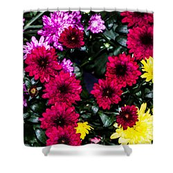 Rainbow Of Color Flowers Shower Curtain
