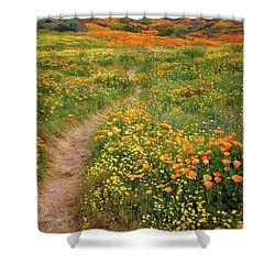 Rainbow Of Wildflowers Bloom Near Diamond Lake In California Shower Curtain