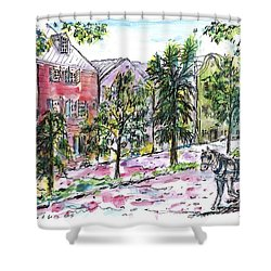 Rainbow Row Shower Curtain
