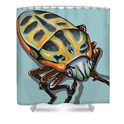 Rainbow Shield Beetle Shower Curtain by Jude Labuszewski