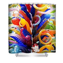Rainbow Spirals Shower Curtain