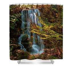 Shower Curtain featuring the photograph Rainbow Springs Waterfall by Louis Ferreira