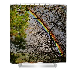 Shower Curtain featuring the photograph Rainbow Tree by Ben Upham III