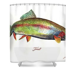 Rainbow Trout Shower Curtain by Juan Bosco