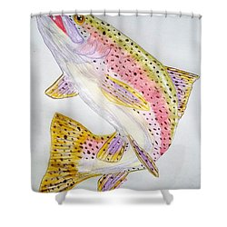 Rainbow Trout Presented In Colored Pencil Shower Curtain by Scott D Van Osdol