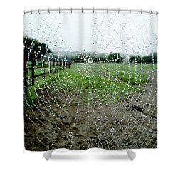 Raincatcher Web Shower Curtain