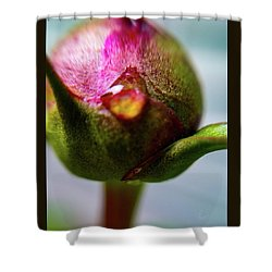 Raindrop On Peonie Shower Curtain