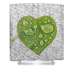 Raindrop Reflections Shower Curtain by Allan Levin