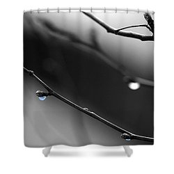 Shower Curtain featuring the photograph Raindrops by Angela Rath
