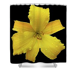 Raindrops On A Yellow Daylily Shower Curtain by Tara Hutton
