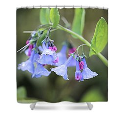Raindrops On Blue Bells Shower Curtain