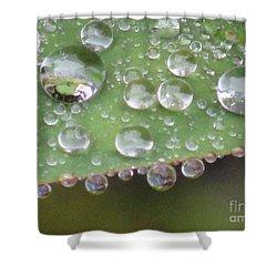 Raindrops On Leaf. Shower Curtain