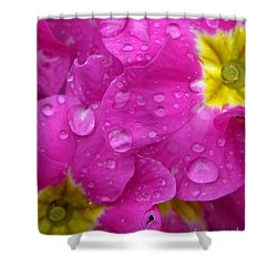 Raindrops On Pink Flowers Shower Curtain by Carol Groenen