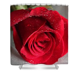 Raindrops On Roses Shower Curtain