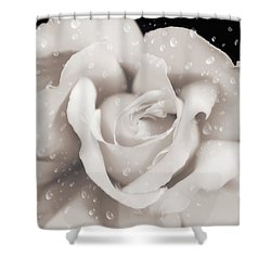 Shower Curtain featuring the photograph Raindrops On Sepia Rose Flower by Jennie Marie Schell