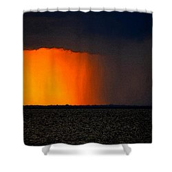 Raining Cats And Dogs Pano Shower Curtain