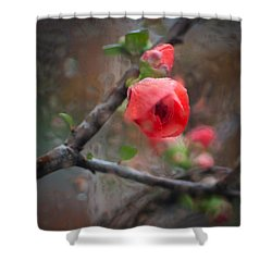 Raining Day Blossom  Shower Curtain