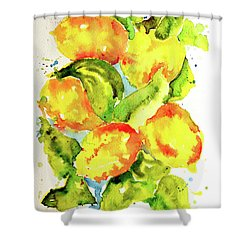 Rainwashed Lemons Shower Curtain