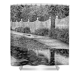 Shower Curtain featuring the photograph Rainy Day by Betsy Zimmerli
