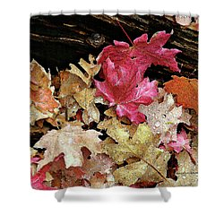 Rainy Day Leaves Shower Curtain