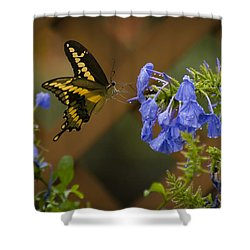 Rainy Day Lunch Shower Curtain