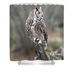 Rainy Day Owl Shower Curtain