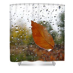 Rainy Day Visitor Shower Curtain