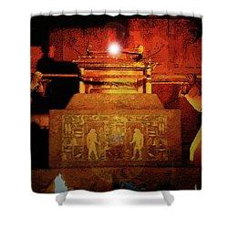 Raising The Ark Shower Curtain by David Lee Thompson
