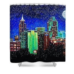Raleigh In Winter Shower Curtain