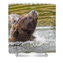 Rambo Bear Shower Curtain