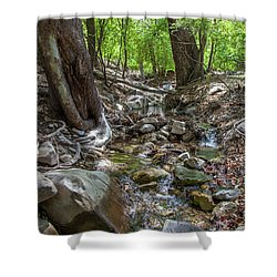 Ramsey Canyon Preserve Shower Curtain