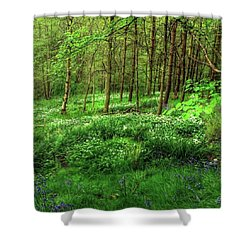 Ramsons And Bluebells, Bentley Woods Shower Curtain