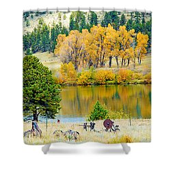 Ranch Pond In Autumn Shower Curtain