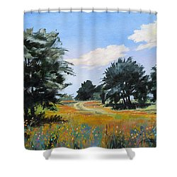 Ranch Road Near Bandera Texas Shower Curtain