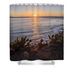 Rancho Gold G Shower Curtain