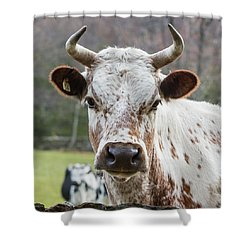 Shower Curtain featuring the photograph Randall Cow by Bill Wakeley