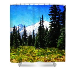 Shower Curtain featuring the photograph Ranier Mountain Meadow by Timothy Bulone
