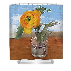 Ranunculus Spring Shower Curtain by Alexis Rotella