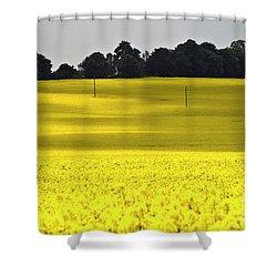 Rape Field In East Germany Shower Curtain by Heiko Koehrer-Wagner